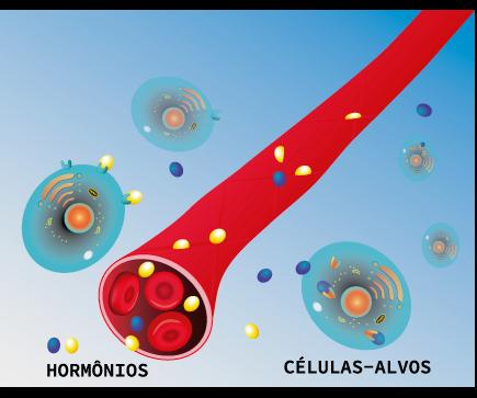 Mecanismo de atuação dos hormônios em células-alvos