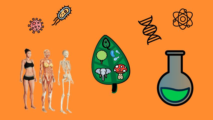 assuntos-biologia-cobrados-no-enem